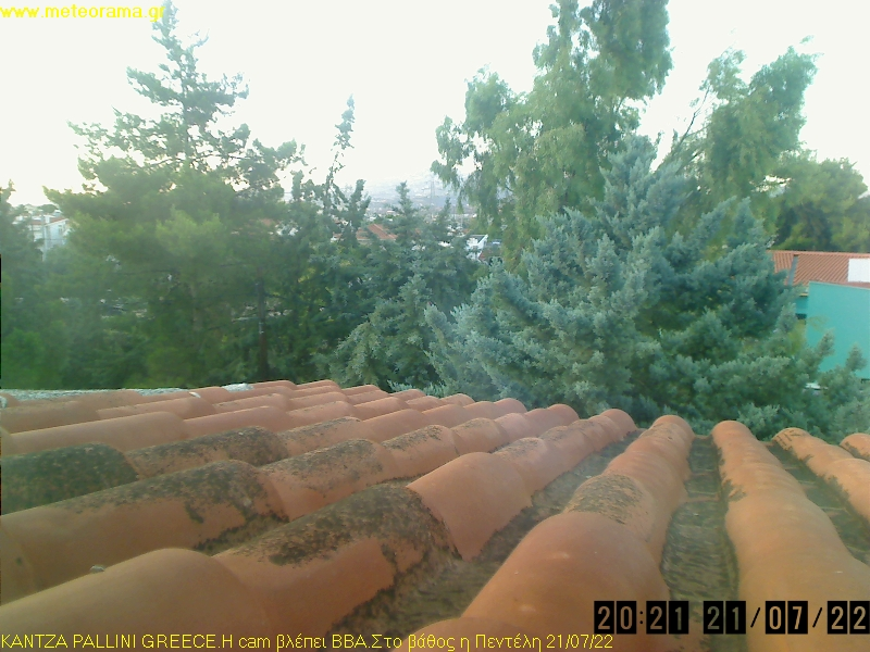 Webcam Katza